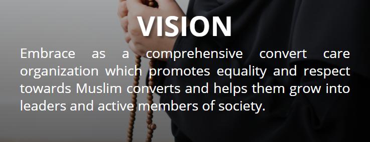 Vision - Embrace